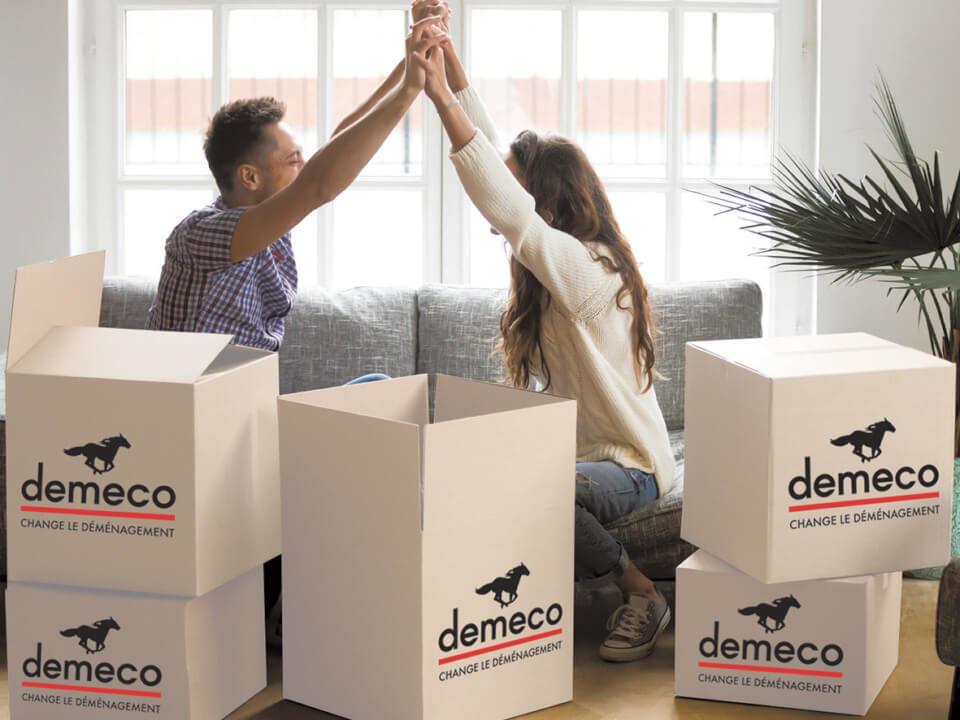 Demeco 3